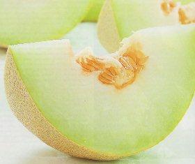 Budidaya-Melon-Nasa