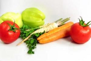 sayuran organik nasa