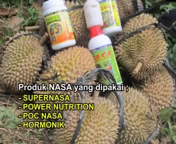 Buah Durian Nasa