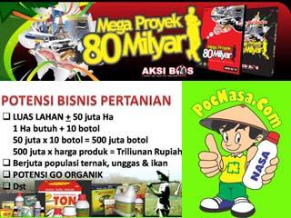 Mega Proyek 80M