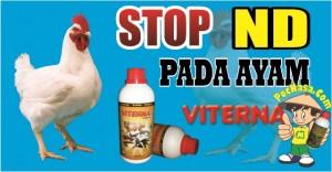 StopND-Ayam Pedaging