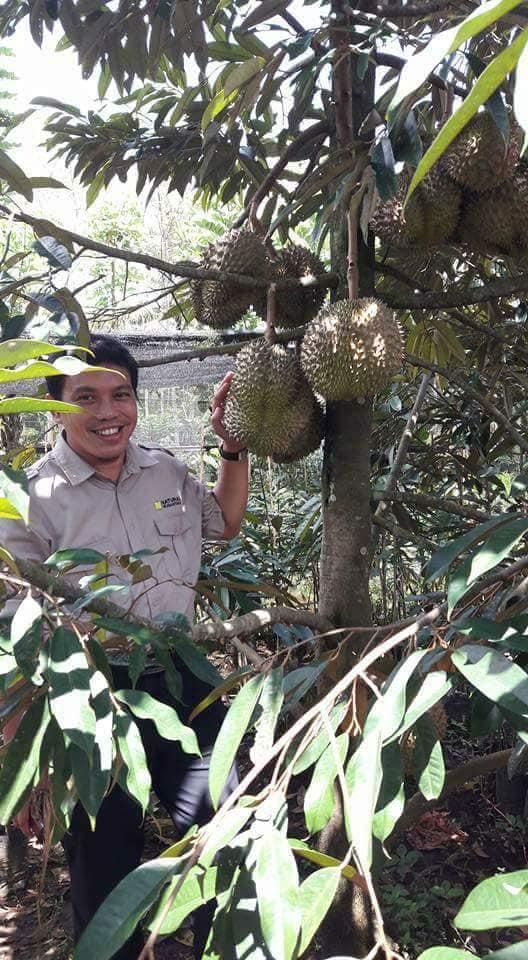 Durian Bawor Nasa